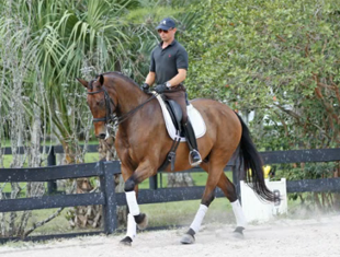 Empire Marcel Lends Mount to Robert Dover Horsemastership Clinic